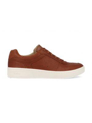 Skechers Palmilla-Maren 222041/COG Bruin